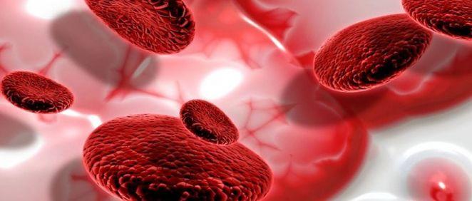 Es necesario diagnosticar el mieloma múltiple de forma temprana (Foto. freepik)
