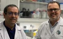 Los investigadores del IDIS Antonio Salas y Federico Martinón (Foto: Sergas)