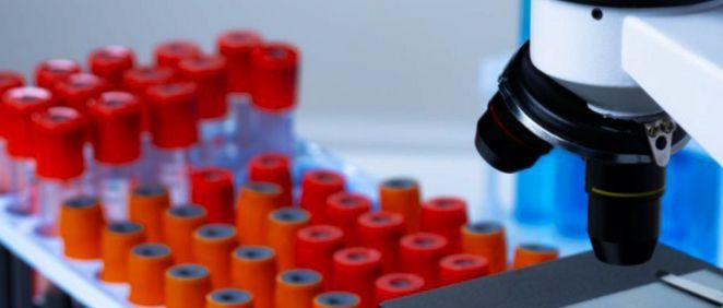Muestras de sangre y microscopio (Foto. Freepik)