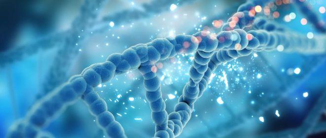 Importancia de las mutaciones genéticas. (Foto. Freepik)