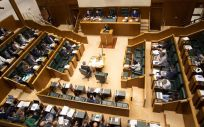 Pleno del Parlamento Vasco (Foto: Josu Chavarri - Parlamento Vasco)