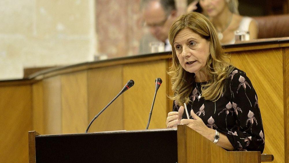 Marina Álvarez, consejera de Salud de Andalucía, interviniendo en el Parlamento andaluz.
