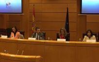 Representantes de FEDE y del Ministerio de Sanidad durante la rueda de prensa celebrada en el Senado con motivo del Día Mundial contra la Diabetes.