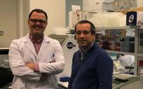 El estudio está dirigido por Antonio Salas Ellacuriaga, líder del grupo GenPoB del idis,  y Federico Martinón Torres, jefe del servicio de Pediatría del Hospital Clínico Universitario de Santiago de Compostela.