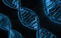 La biología molecular se ha convertido en uno de los principales avances de la Medicina