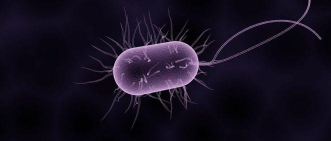 PRAN publica el documento marco para la Vigilancia Nacional de la Resistencia a los Antimicrobianos (Foto. freepik)