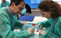 En Castilla-La Mancha, durante el año pasado se extrajeron un total de 170 córneas y se realizaron un total de 134 implantes de este tejido.