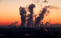 La contaminación afecta al esperma
