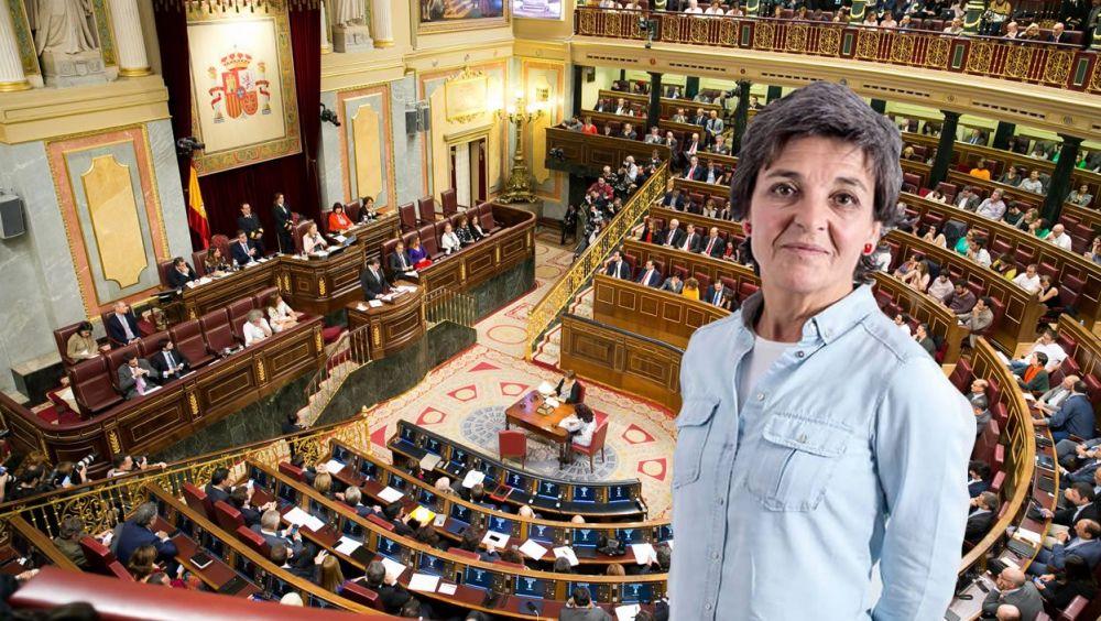 La portavoz adjunta de la Comisión de Sanidad y Servicios Sociales, Amparo Botejara