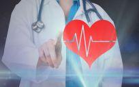 La ecografía consigue identificar los casos de enfermedades cardíacas con una gran efectividad, lo que permite actuar con rapidez.