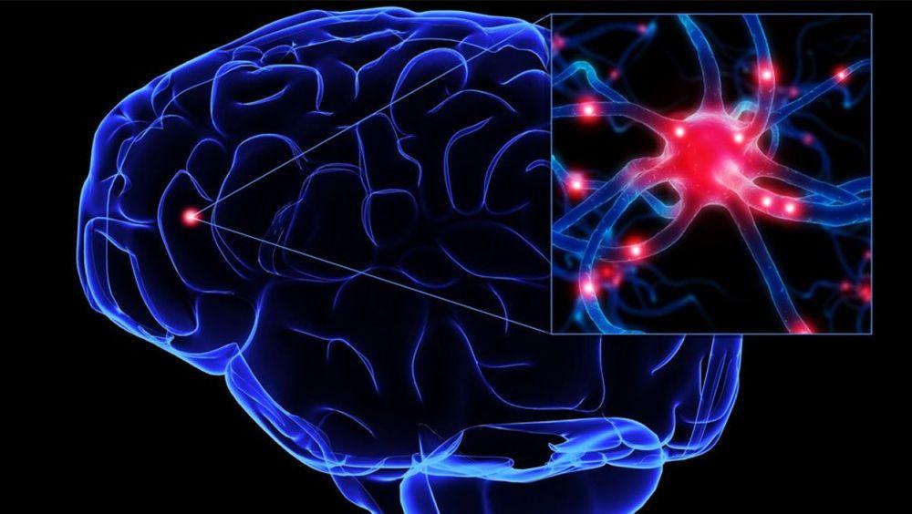 La esclerosis múltiple es la segunda causa de discapacidad entre los jóvenes españoles, después de los accidentes de tráfico.