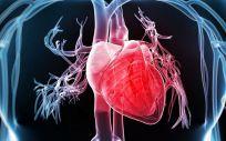 El ejercicio físico ayuda a disminuir la dilatación de la arteria aorta, una de las más afectadas por este síndrome.