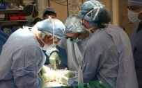 La Unión Europea ha realizado un informe que recoge las cifras de donantes y trasplantes entre 2008 y 2015.