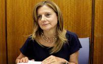 La Consejería de Salud andaluza, liderada por Marina Álvarez, destinará 2.023.332 euros a las obras de ampliación