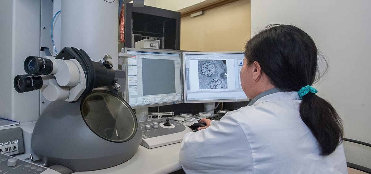 El 30% de la investigación biomédica se centra en el cáncer