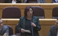 La senadora socialista Pérez Castilleja