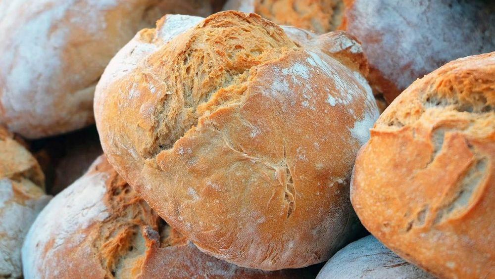 La ciencia se inclina por el pan integral
