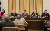 Imagen de una de las Comisiones de Sanidad celebradas en el Congreso durante la legislatura.