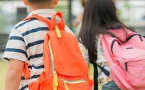 """Según explican los sindicatos, la ausencia de estas profesionales en los centros escolares está generando """"graves problemas de desigualdad entre el alumnado"""""""