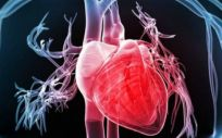 El agujero oval en el corazón consiste en un agujero entre las ventrículas izquierda y derecha