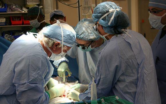 España suma ya más de 100.000 trasplantes de órganos