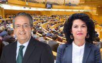 El senador del PP Antonio Alarcó, quien ha rechazado la moción de Unidos Podemos, defendida por Maribel Mora.