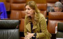 La consejera de Salud, Marina Álvarez, en una intervención en el Parlamento de Andalucía