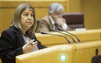 Kontxi Palencia, senadora de Unidos Podemos por Álava. Foto: Irene Lingua