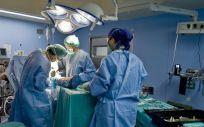 El Gobierno apuesta por el desarrollo de programas especiales que faciliten la utilización de los órganos infantiles disponibles