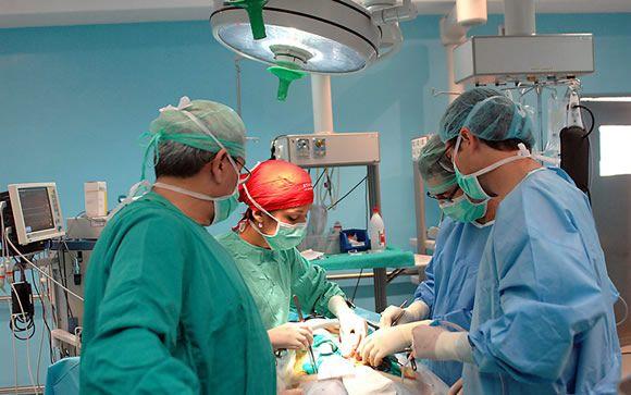 ¿Qué hace España para seguir siendo líder mundial en trasplantes y donaciones?