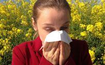 En primavera, un total de ocho millones de personas en España sufren picores de garganta, enrojecimiento de ojos, tos, estornudos o congestión nasal