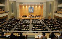 La Asamblea Mundial de la Salud la organiza la OMS
