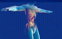 Una nueva técnica aumenta la eficacia de la quimio en pacientes con cáncer de páncreas