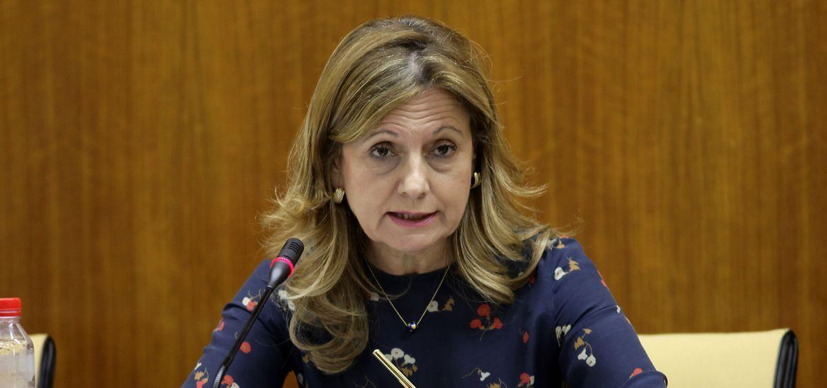 La consejera de Salud de Andalucía, Marina Álvarez