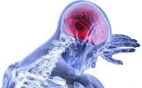 Un gel para regenerar daños cerebrovasculares