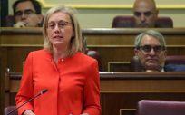 """Teresa Angulo, portavoz sanitaria del PP, considera que con Montón como ministra se va a volver a un SNS """"quebrado""""."""