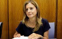 La consejera de Salud de Andalucía y máxima responsable del SAS, Marina Álvarez