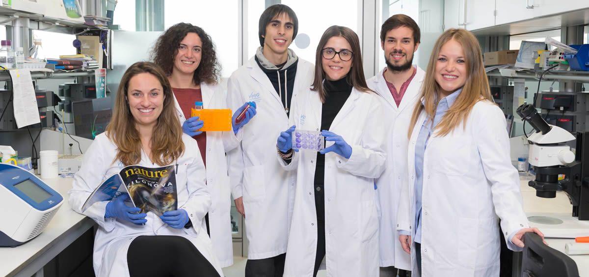 Una nueva herramienta permite reprogramar células adultas a células madre en ratones