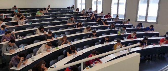 Los datos evidencian una clara feminización universitaria en nuestro país