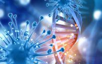 Esta herramienta diagnóstica, basada en la biología molecular, está principalmente dirigida a ginecólogos y patólogos que quieran descartar cáncer en pacientes de riesgo.