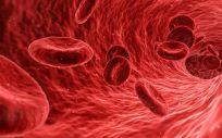 El aparato identifica las proteínas que aumentan en la sangre cuando se produce una lesión cerebral traumática grave