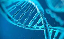 Una segunda mujer china estaría embarazada de un bebe genéticamente modificado