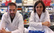 Un trabajo liderado por el investigador doctor Josep Villanueva y la doctora Olga Méndez, primera autora, del Vall d'Hebron