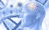 El alzhéimer es la principal causa de demencia, enfermedad que afecta a 50 millones de personas en todo el mundo.