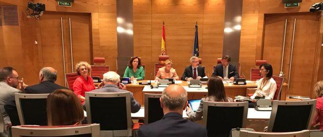 La delegada del Gobierno para el Plan Nacional sobre Drogas, Azucena Martí, ha comparecido en la Comisión Mixta Congreso Senado.
