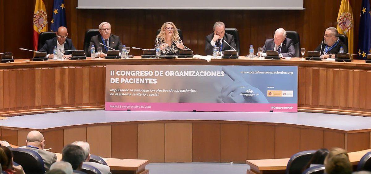 Los presidentes de las corporaciones profesionales sanitarias, junto a los representantes del Ministerio de Sanidad y la Plataforma de Organizaciones de Pacientes