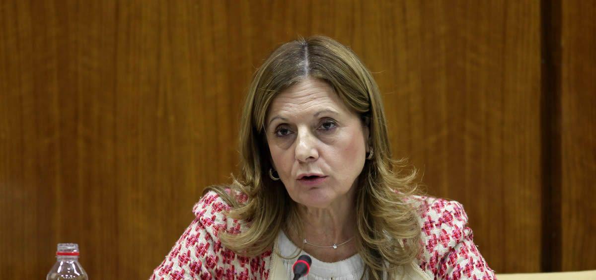 La consejera de Salud, Marina Álvarez.