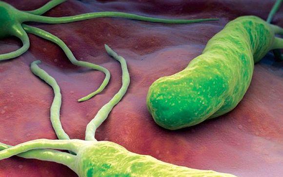 Como curar la gastritis cronica con metaplasia
