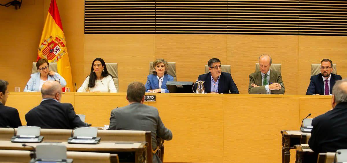 La Ministra de Sanidad, María Luisa Carcedo, este miércoles durante su comparecencia en la comisión sectorial.
