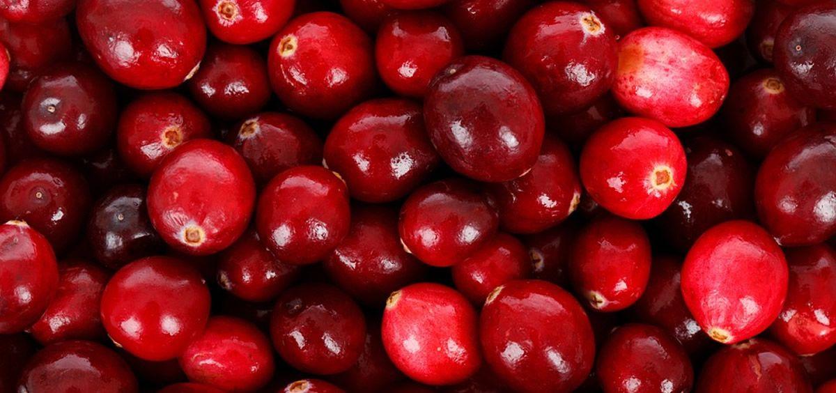 Algunos productos con arándano rojo para la cistitis no se pueden considerar sanitarios